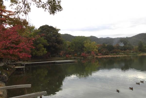 大覚寺・大沢の池