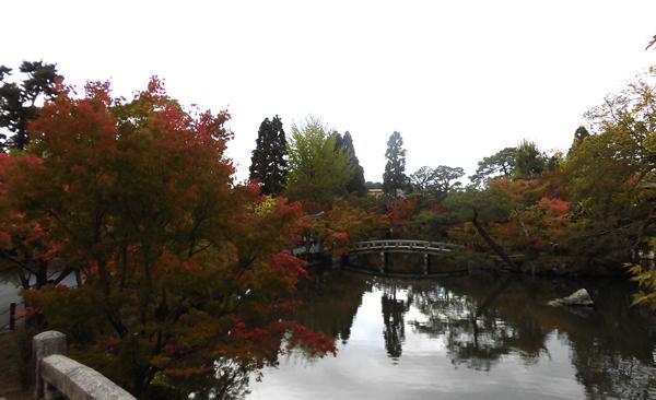 永観堂・放生池